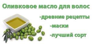 olivkovoe-maslo-dlia-volos.-jpg