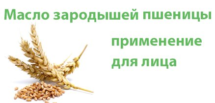 maslo-zarodishei-pshenitci-dlia-lica