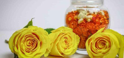 ehfirnoe-maslo-rozy